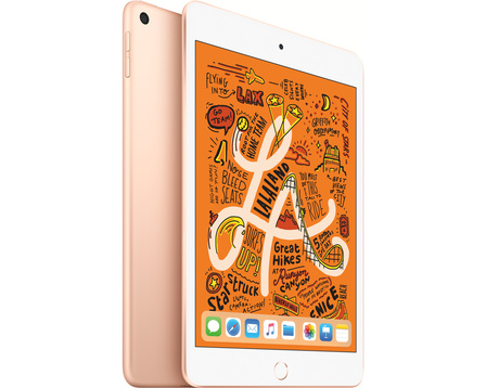 iPad mini Wi-Fi + Cellular 64GB - Guld
